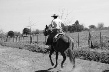 Argentinean Gaucho