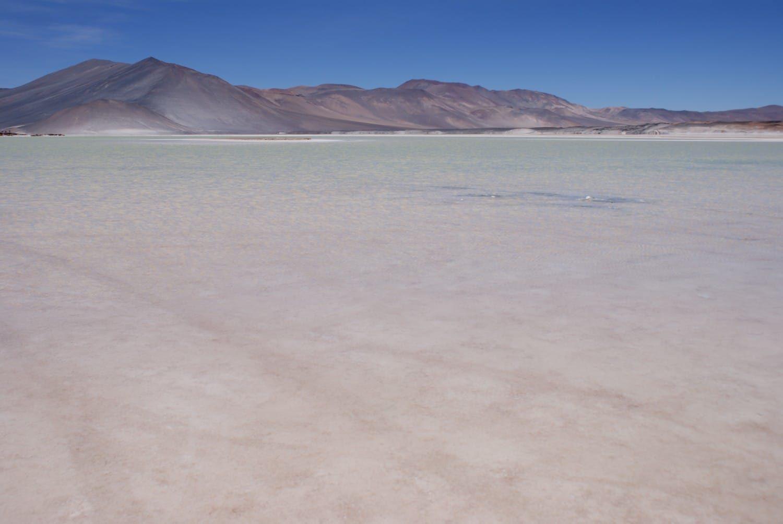 Atacama Desert Photos - Salar de Talar
