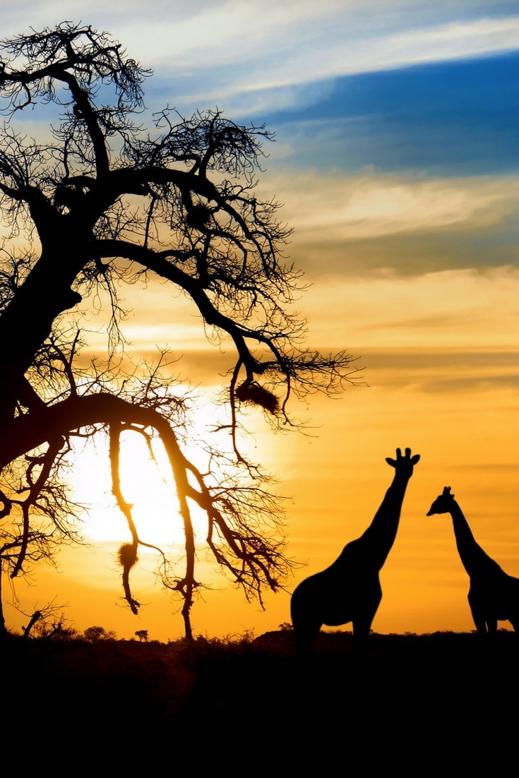 Affordable travel destinations. If you're looking for travel inspiration, Botswana should be at the top of your list. Read our full guide to the 15 most affordable travel destinations