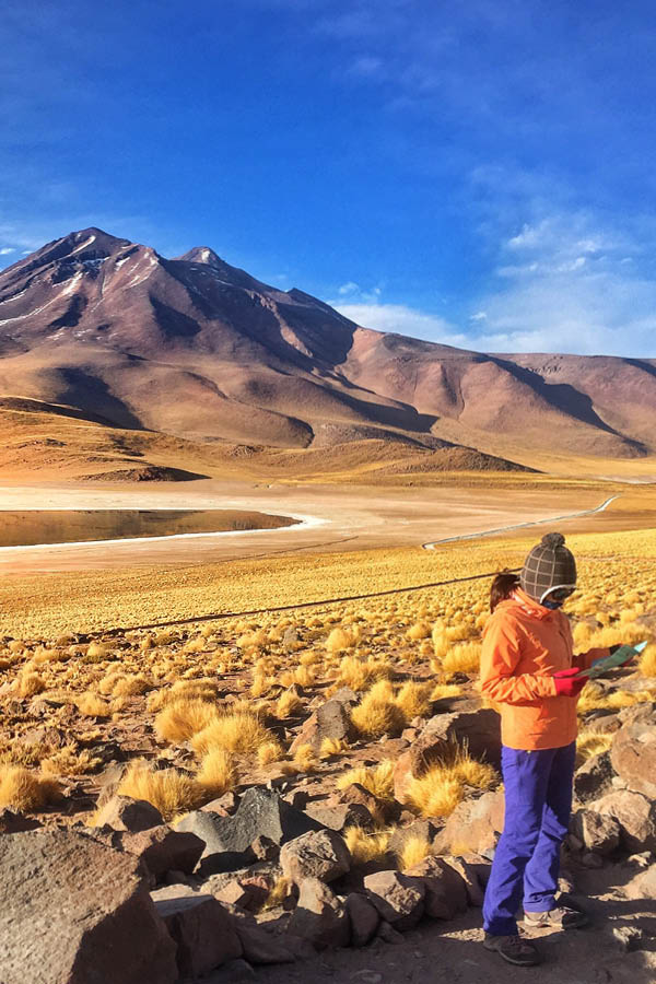 In the Atacama