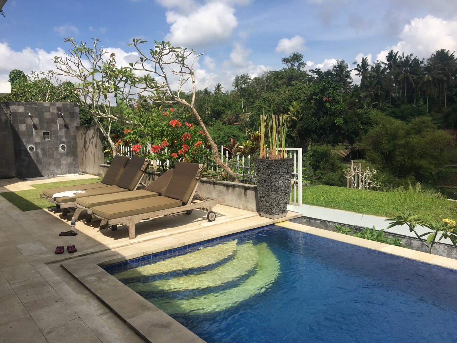 Private Pool at Blooming Lotus Yoga Ubud
