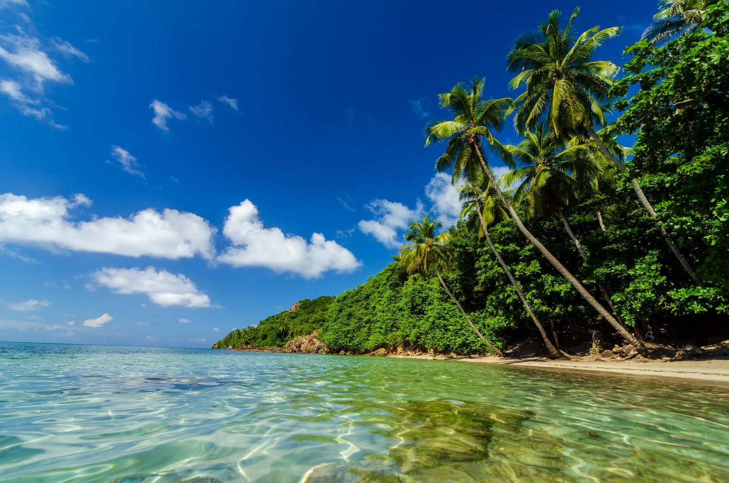 Providencia has some of the best beaches in Colombia