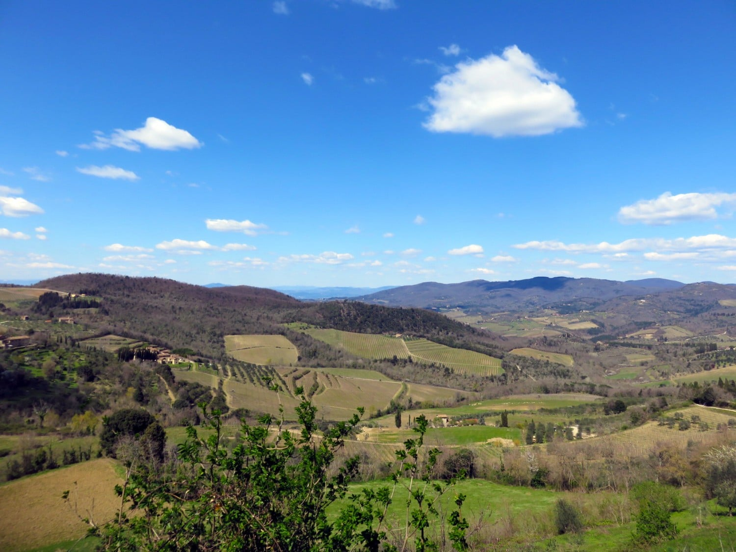 Tuscany Vineyards - Driving through Italy. Read the full article.