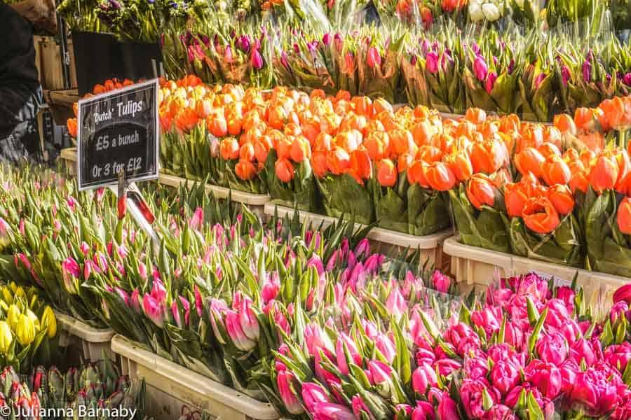 Tulips at Columbia Road
