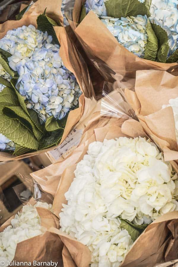 Hydrangea heads at the market