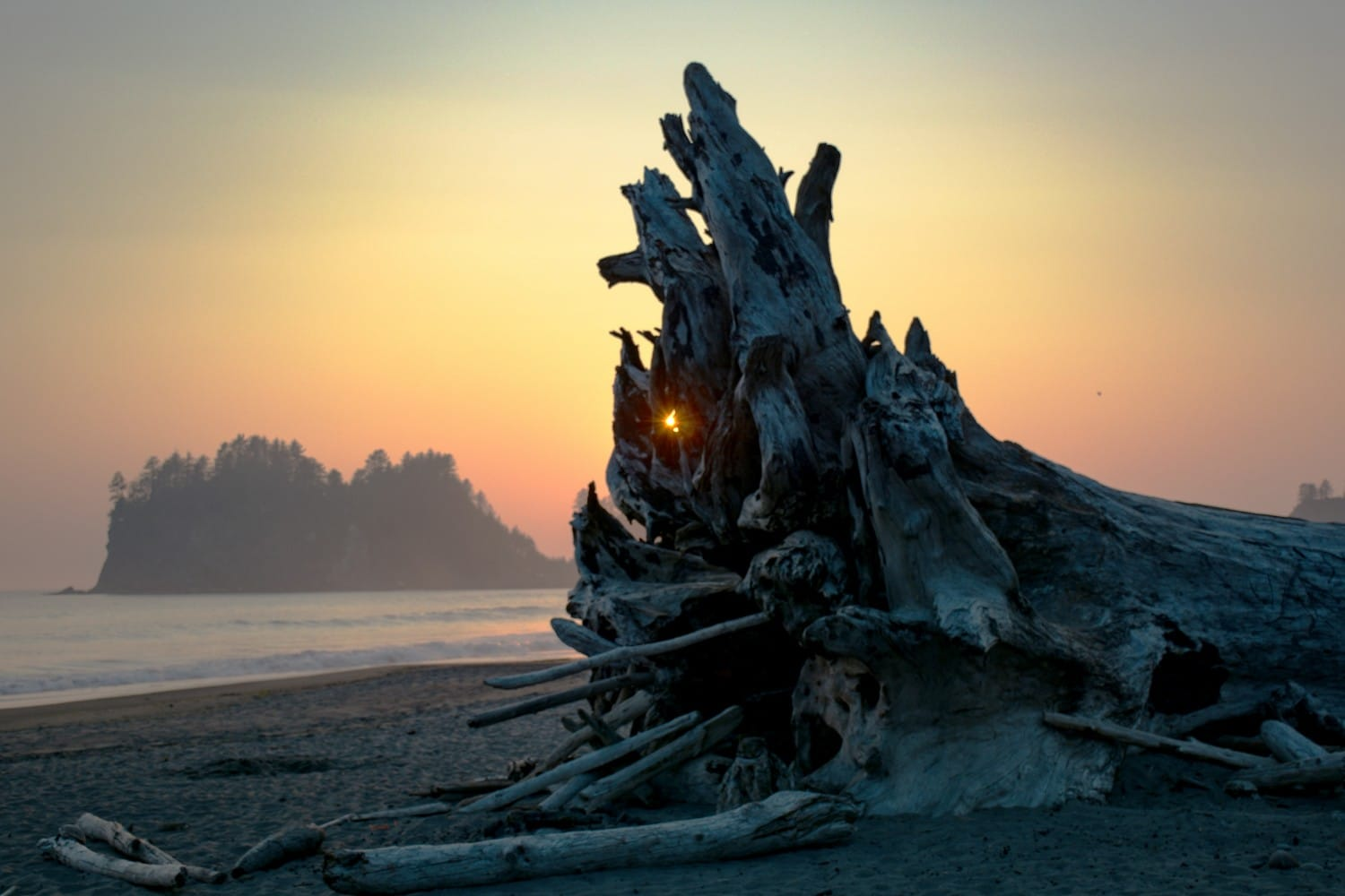 La Push Beach - Washington