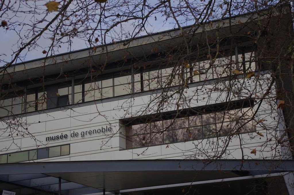 Museum of Grenoble