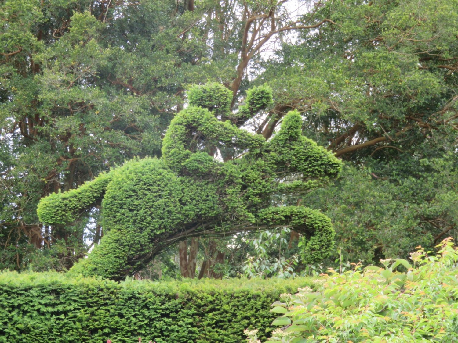 Northern Ireland Weekend Break - Folk lore topiary
