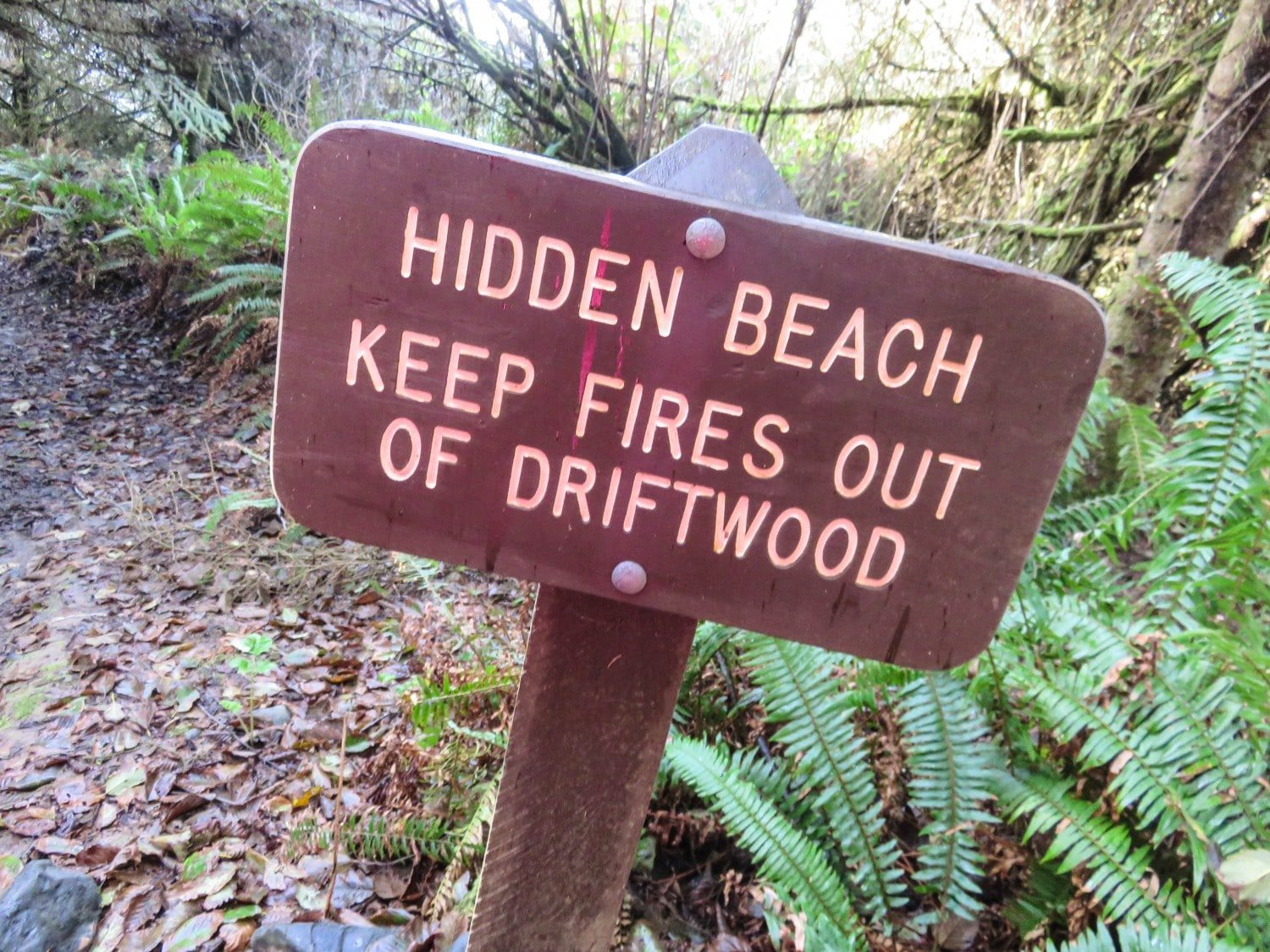 Hidden Beach, Klamath. West Coast USA Road Trip Guide. Everything you need to know to plan your Highway 1 road trip. Read now.