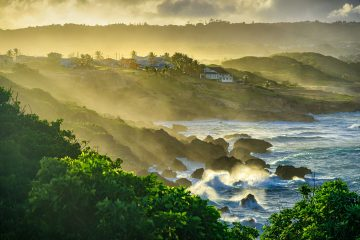 Best Things to Do in Barbados - The Ultimate Guide