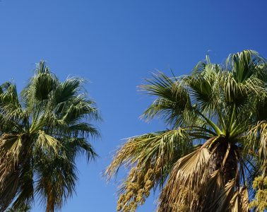 Review of the Four Seasons Fairways Resort - The Algarve, Portugal