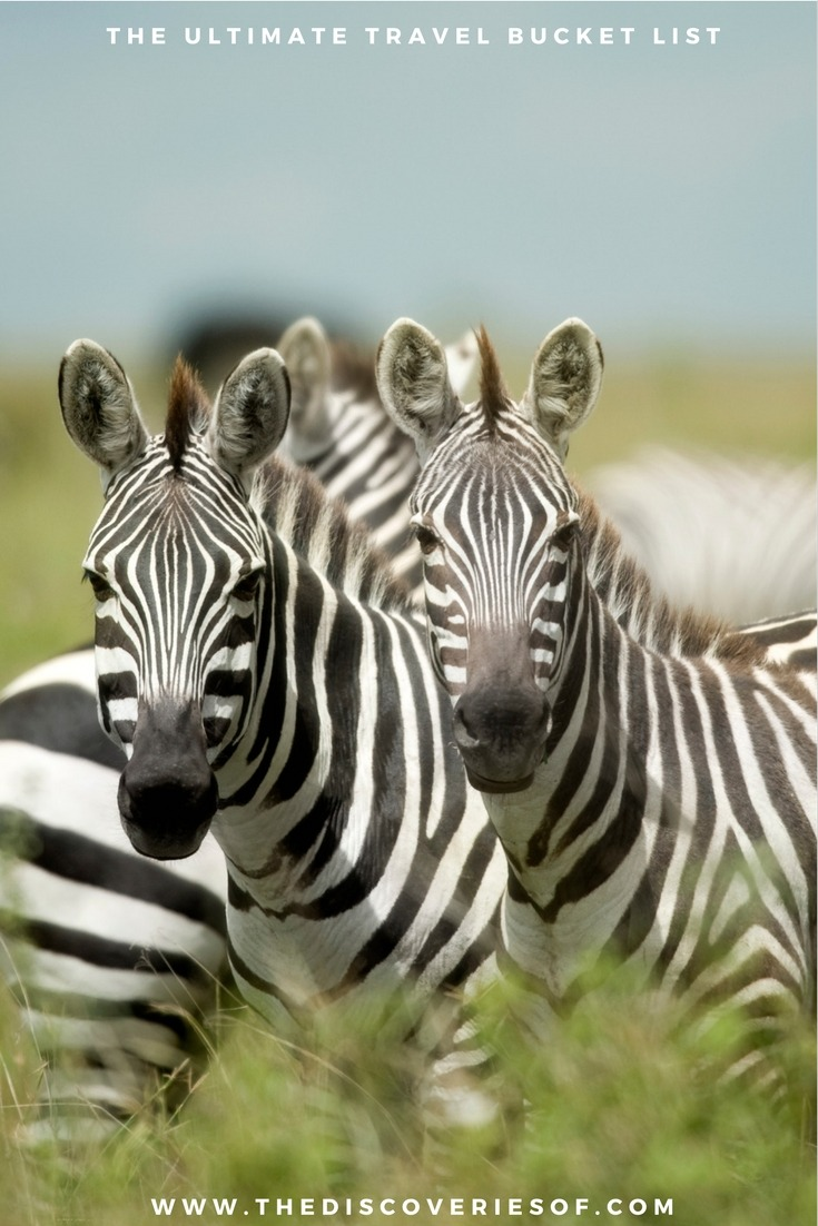 The Serengeti, Tanzania and Kenya. 100 unique travel bucket list ideas - the ultimate list of things to do and places to see in your lifetime. Read the full guide now. See the world, embrace adventure, satisfy your wanderlust. United States I England I Australia I Canada I Travel Inspiration I Photos I Dreams I Ideas #travel #bucketlist #travelinspiration #wanderlust