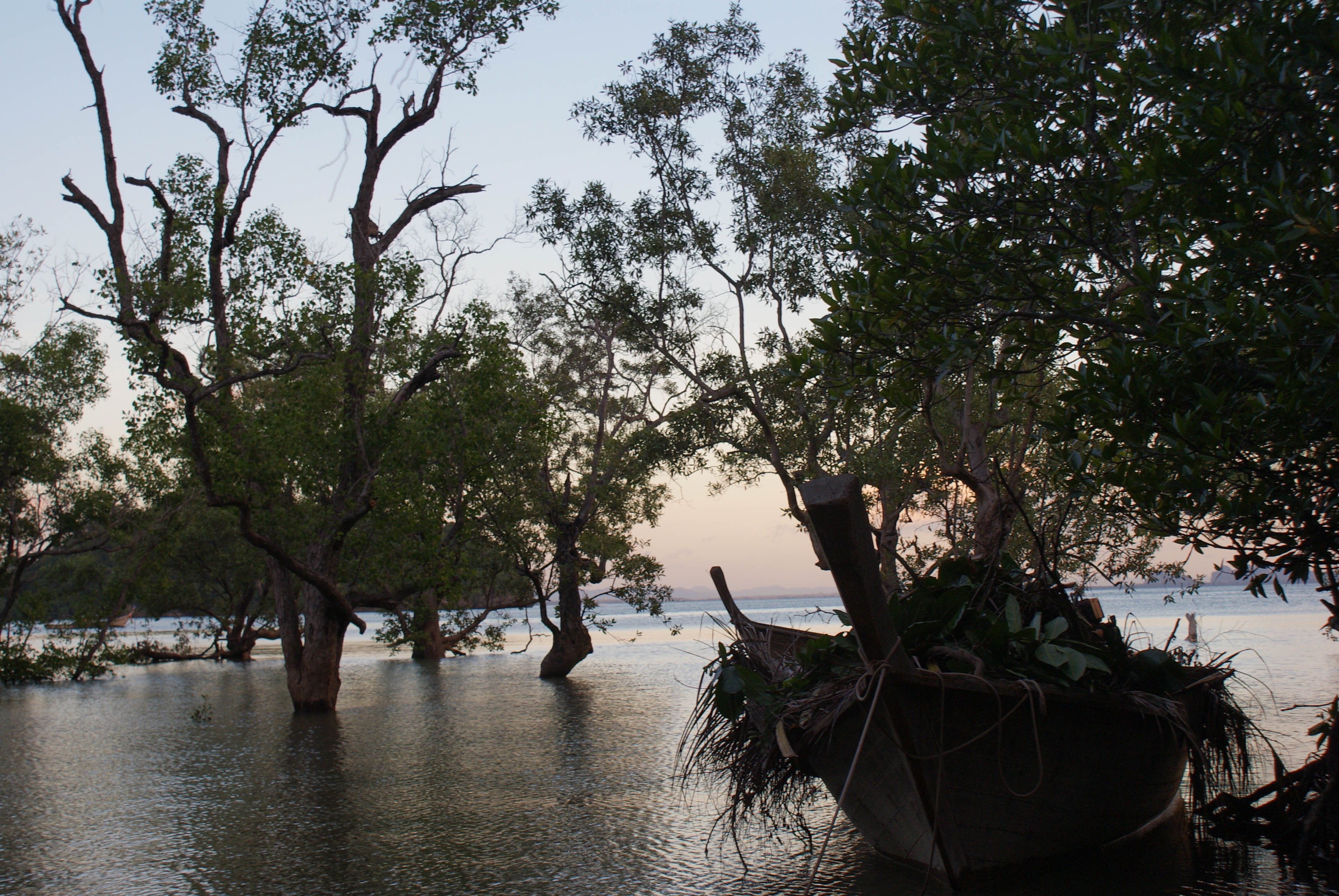 Postcards from Thailand: Railay, Krabi Photo Journal - Gorgeous sunset in the mangroves
