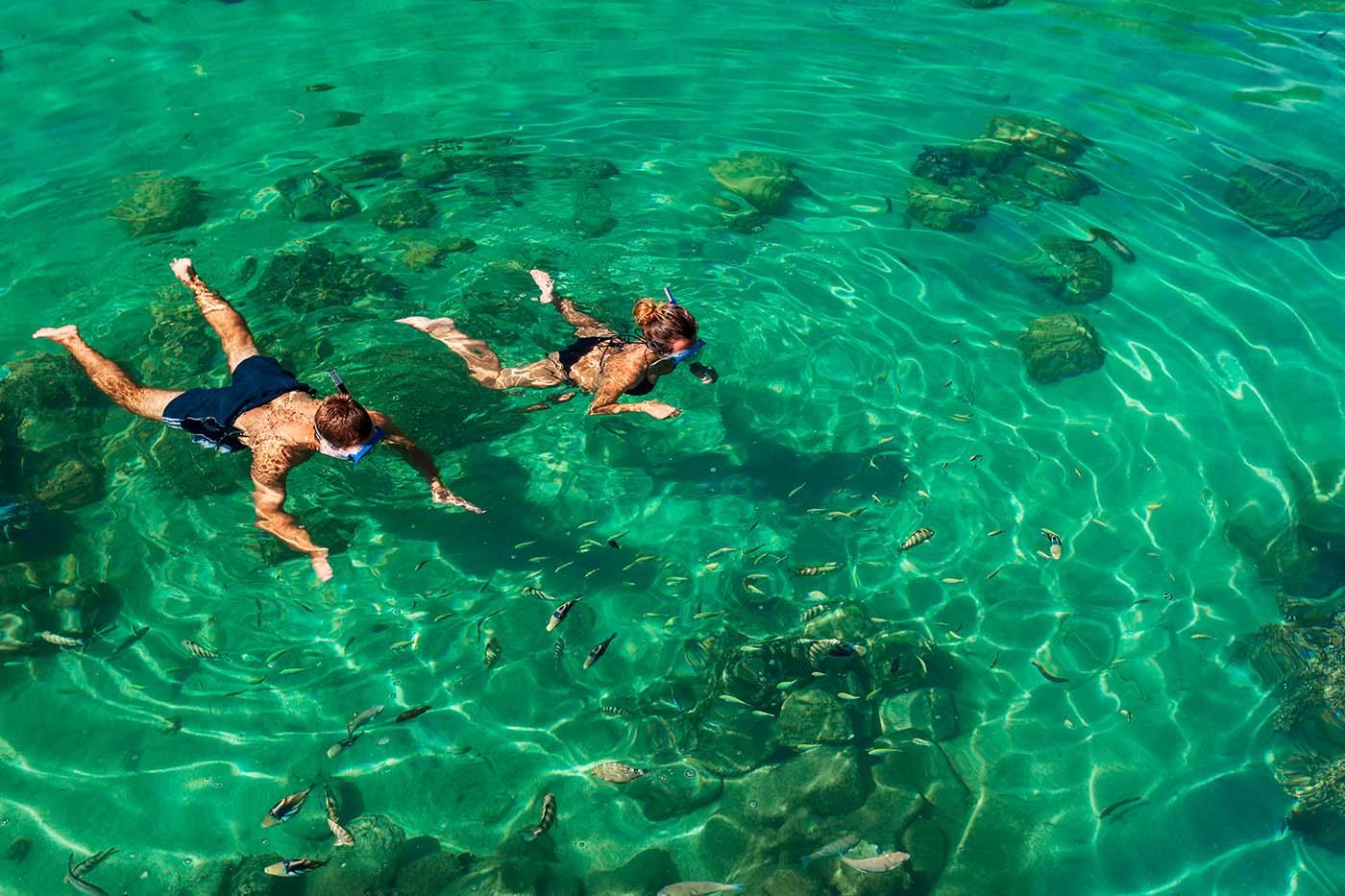 Snorkelling in the Musandam