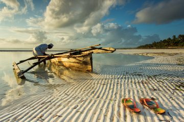 Tanzania and Zanzibar Travel Guide