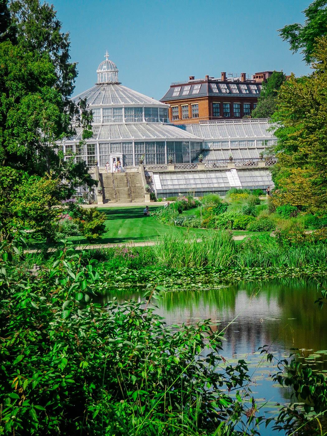 Botanical Gardens - Three Days in Copenhagen #traveldestinations #travel #denmark