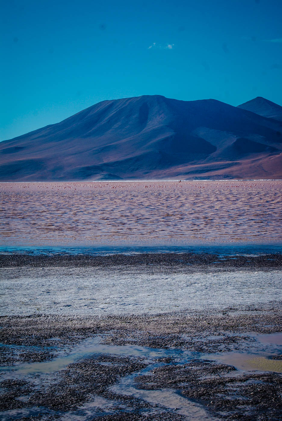 Laguna Colorada, Bolivia South America Travel Bucket List. 90 Awesome Things to do in South America When Backpacking and Travelling #southamerica #bucketlist #traveldestinations