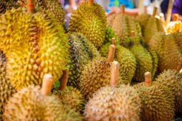 Durian Fruits for ice cream