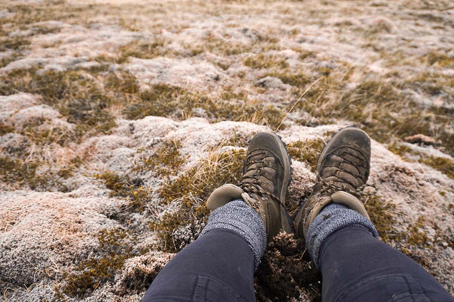 Hiking boots in Iceland moss background