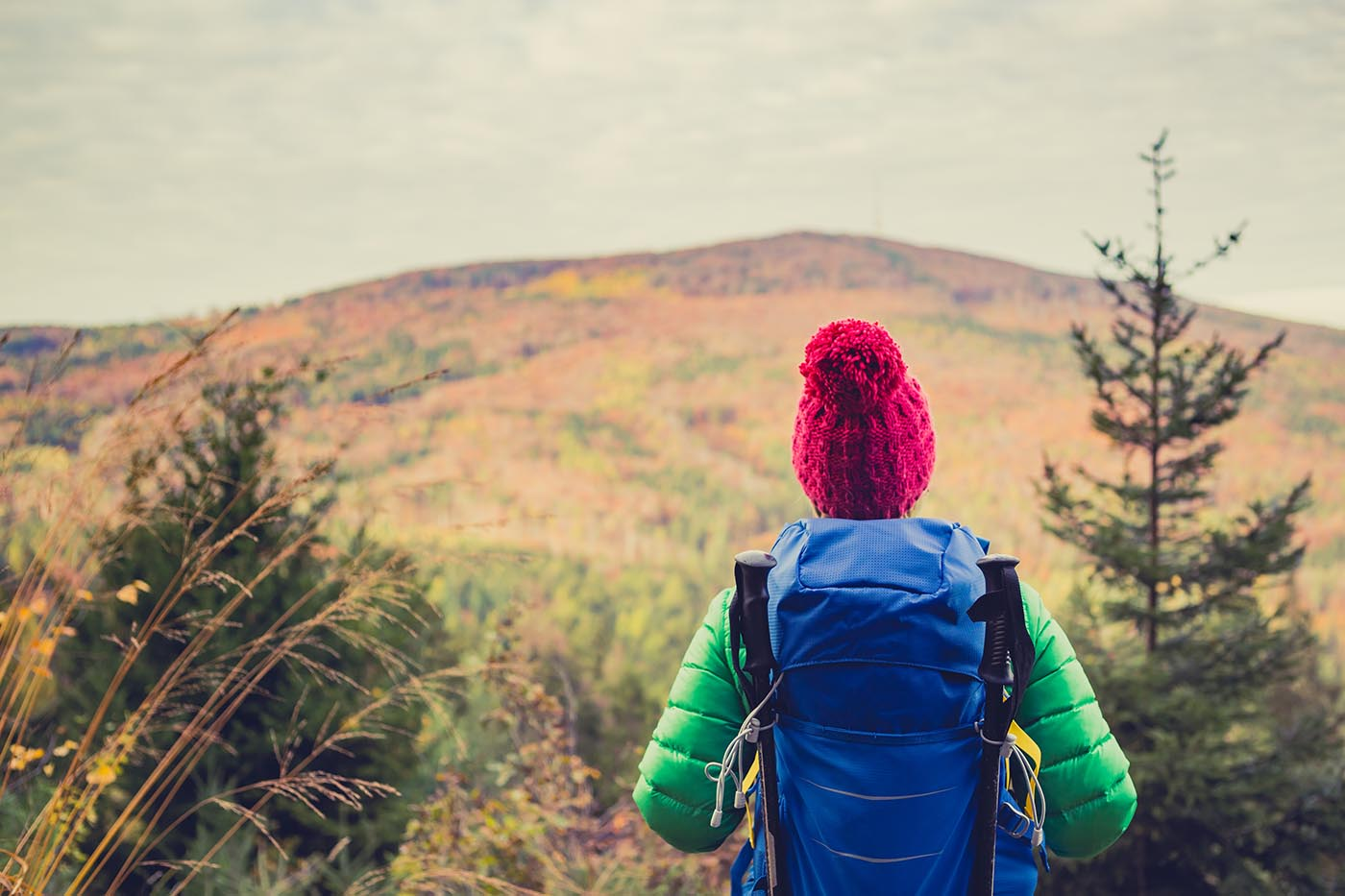Best Travel Backpacks for Women: Rated + Reviewed