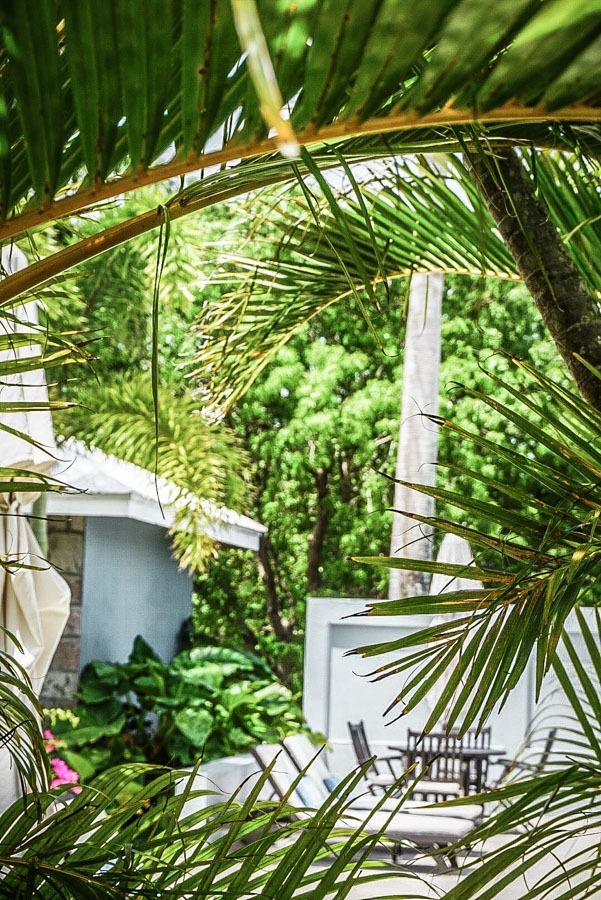 Montpelier Inn, Nevis