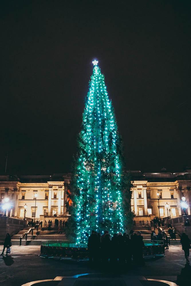 Christmas Tree Trafalgar Square