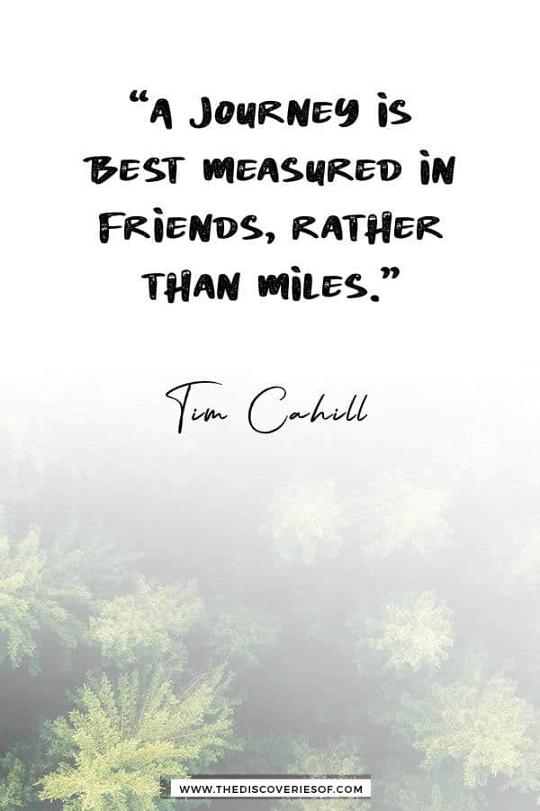 A journey is best measured in friends - Tim Cahill