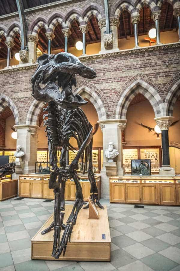 Oxford Museum of Natural History