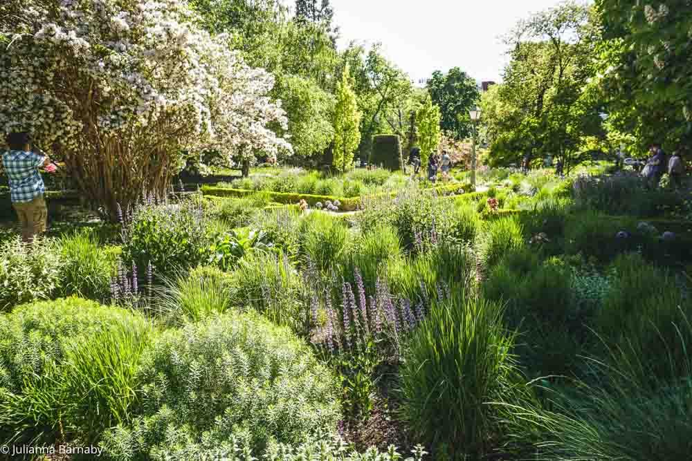 Madrid Botanical Garden