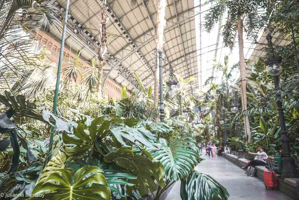 Tropical Vibes in Atocha Station