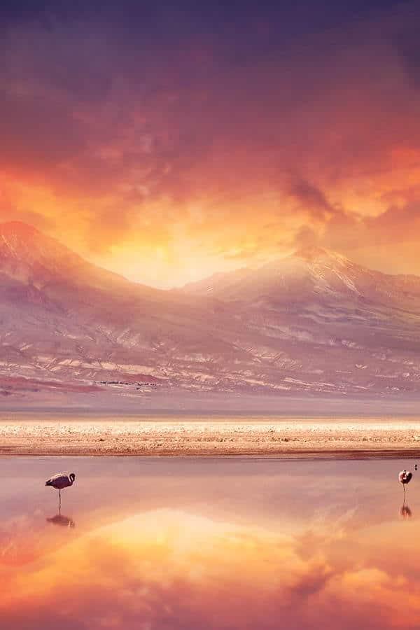 Atacama plain