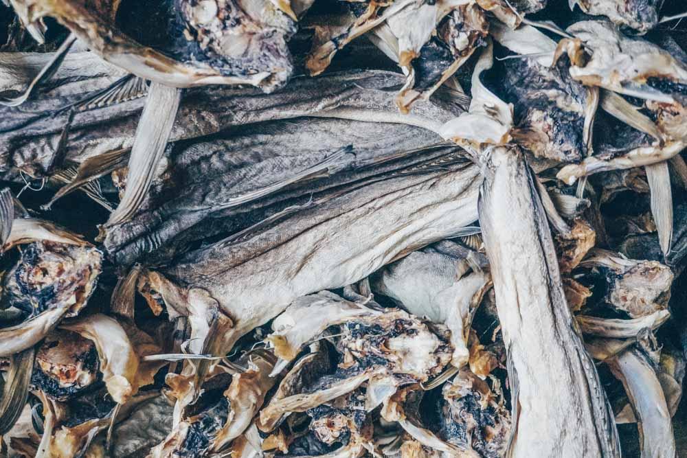 Stockfish at L Berg + Sonner