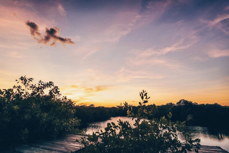 Sunset at the Nativus Cenote