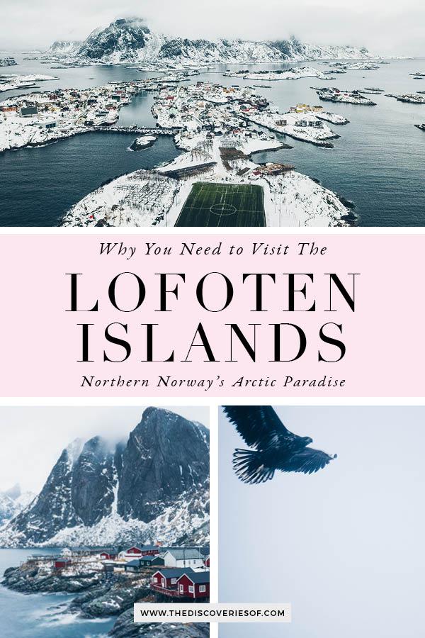 Lofoten Islands Guide